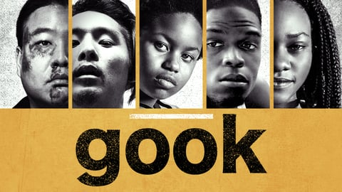 Gook cover image