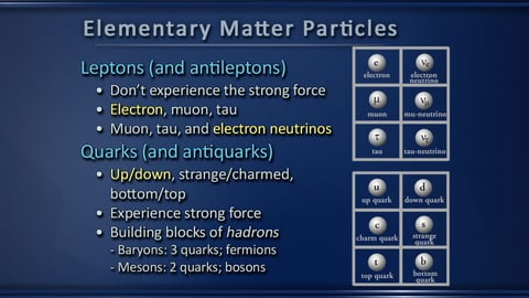 Preview image of The Particle Zoo