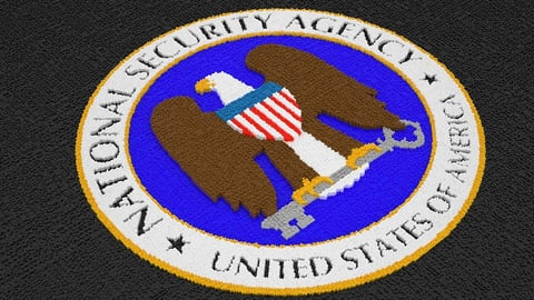 The U.S. Spy Network in Action