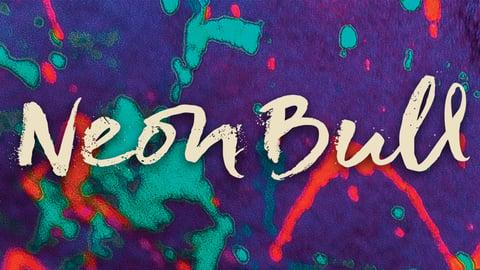 Neon Bull cover image