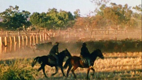 Preview image of Coniston Muster [from the AIATSIS Collection]