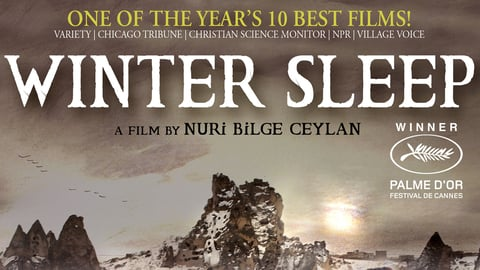 Winter Sleep cover image