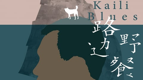 Kaili Blues Lu bian ye can cover image