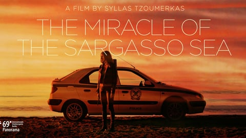 The Miracle of Sargasso Sea
