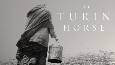 The Turin Horse cover image
