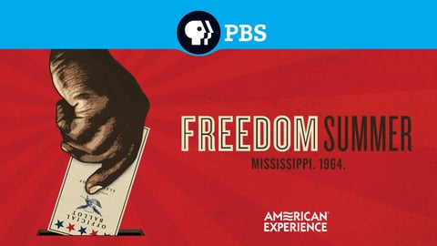 Preview image of American experience - freedom summer