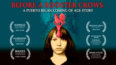 Before a Rooster Crows