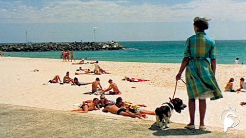 Life In Australia Series: Perth