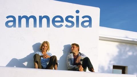 Amnesia cover image