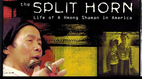 The Split Horn: The Life Of A Hmong Shaman In America