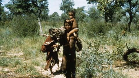 A Kalahari Family Part 2: End Of The Road