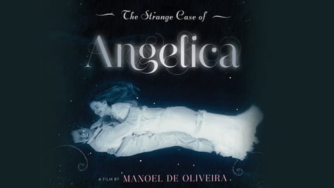 The Strange Case of Angelica cover image