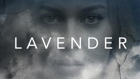 Lavender cover image