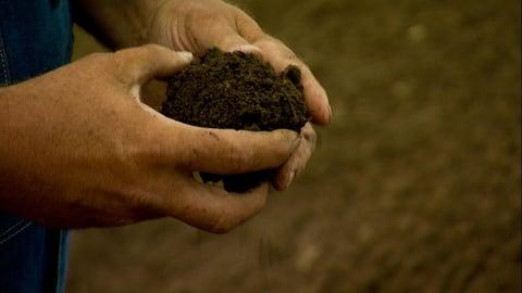 SOS: Save Our Soil