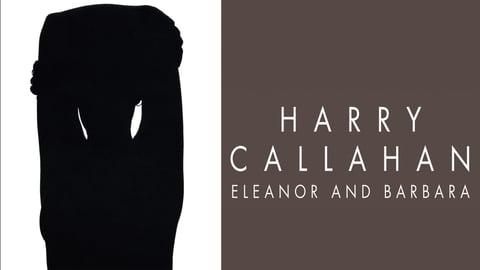 Harry Callahan: Eleanor and Barbara