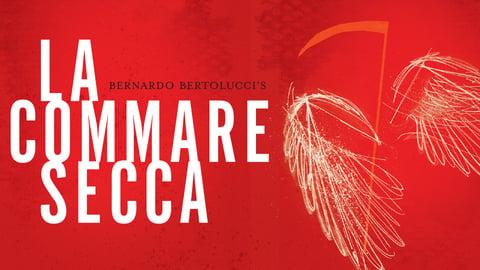 Preview image of La Commare Secca