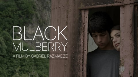 Black Mulberry cover image