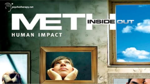 Preview image of Meth Inside Out Series