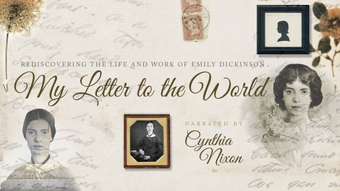 My Letter To The World cover image