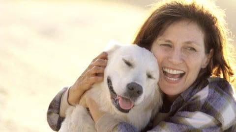 Dog Training 101