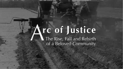 Arc of Justice - The Rise, Fall and Rebirth of a Beloved Community