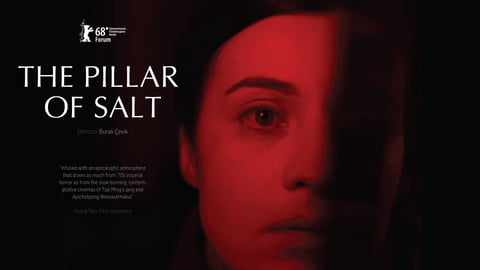 The Pillar of Salt cover image