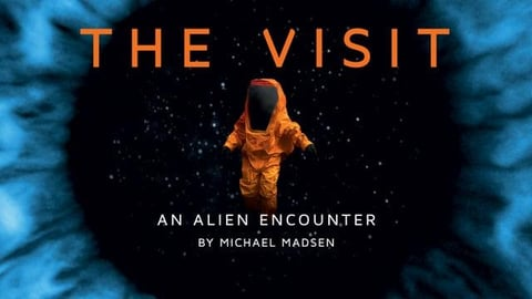 Preview image of The Visit: An Alien Encounter