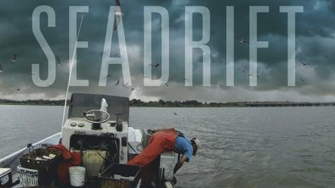 Seadrift cover image