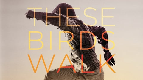 These Birds Walk cover image