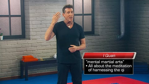 Martial Arts for Your Mind and Body. Episode 9, Qigong: Martial Meditation for Energy cover image