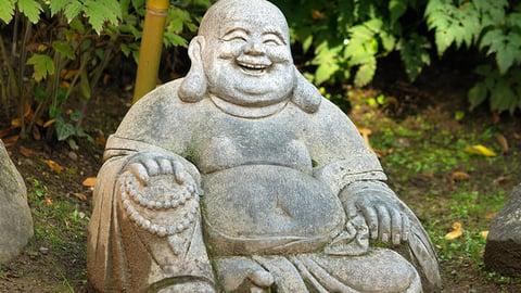 Lotus Kick and Laughing Buddha