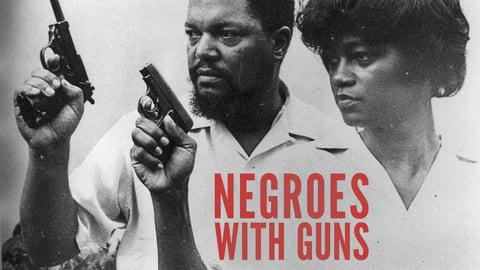 Negroes With Guns - Rob Williams And Black Power