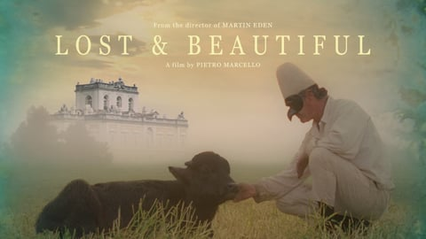 Lost and Beautiful cover image