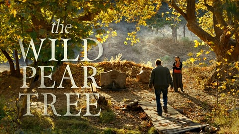 The Wild Pear Tree cover image