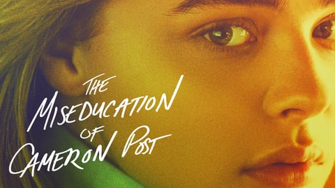 Preview image of The Miseducation of Cameron Post