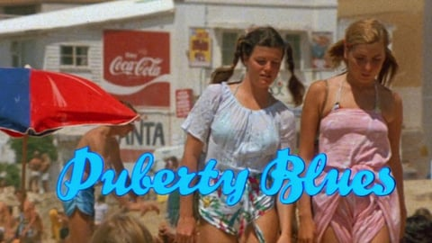 Preview image of Puberty blues