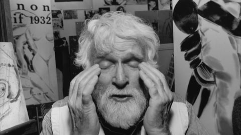 Preview image of Kitaj…In the Picture