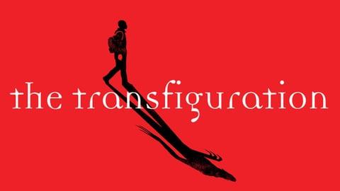 The transfiguration cover image