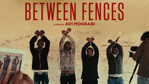 Between fences cover image