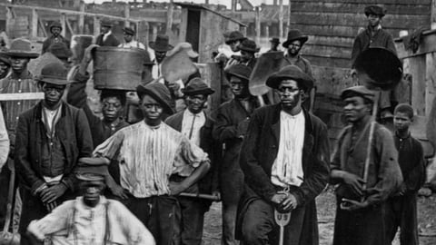 The African Americans Collection