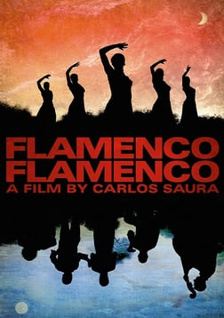 Flamenco, Flamenco - A Musical Odyssey Through a Dynamic Art Form