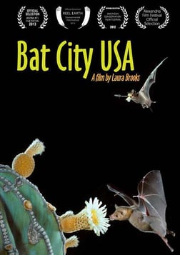 Bat City USA
