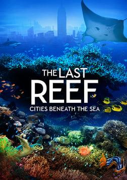The Last Reef - A Lush Look at Ocean Reefs