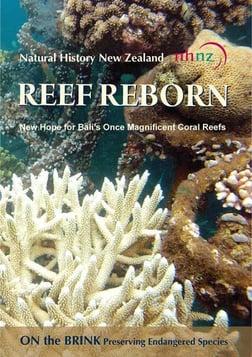 Reef Reborn