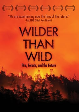 Wilder Than Wild: Fire, Forests, and the Future