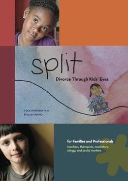 Split: Divorce Through Kids' Eyes