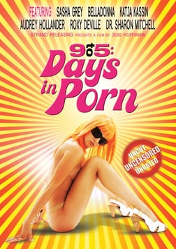 9 to 5 Days in Porn - Personal Stories From the Adult Entertainment industry