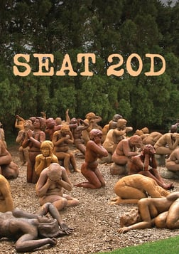 Seat 20D
