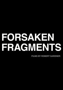 Forsaken Fragments