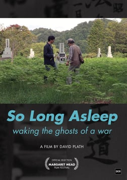 So Long Asleep - Honoring Korean Men Killed in the Asia-Pacific War